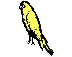 English Homeschoolers: The Canary in the Mine for All Parents