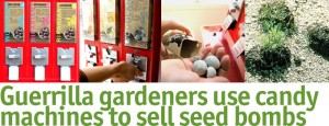 Guerrilla Gardeners in L.A.; Is Your Town Next?