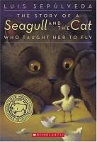 SeagullandCat