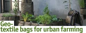 Geo-textile Bags for Urban Farming
