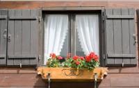 WindowWithFlowers home education
