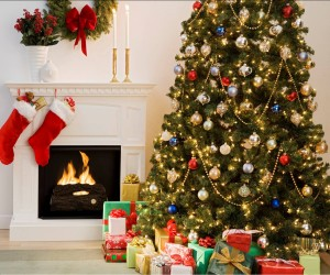 Great Books for Parents to Find Under the Tree
