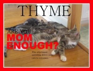 Attachment Parenting WILL Follow Homeschooling: WINNING!