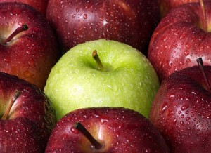 Homeschooling Resources: It's Apple-Picking Time!